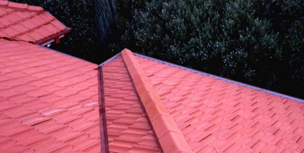 roof restoration cleaning