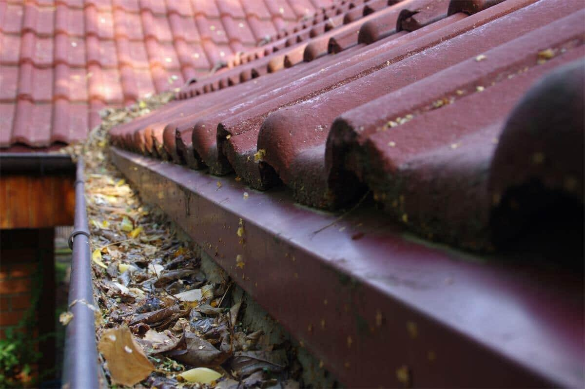 Gutter Cleaning Melbourne